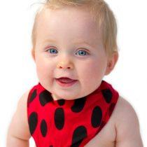 Noo Ladybug Bib